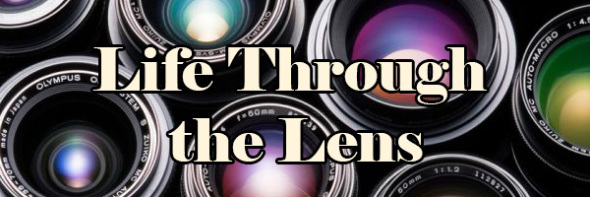 through-the-lens